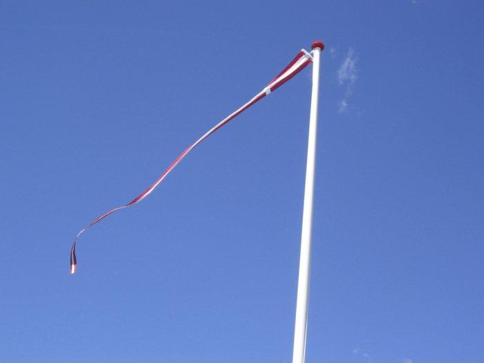 Dannebrogsflag t/12 m flagstang