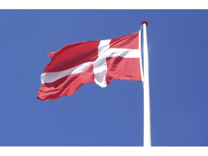 Dannebrogsflag t/10 m flagstang